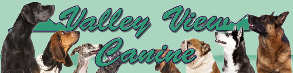 Dog Training with Valley View Canine LLC